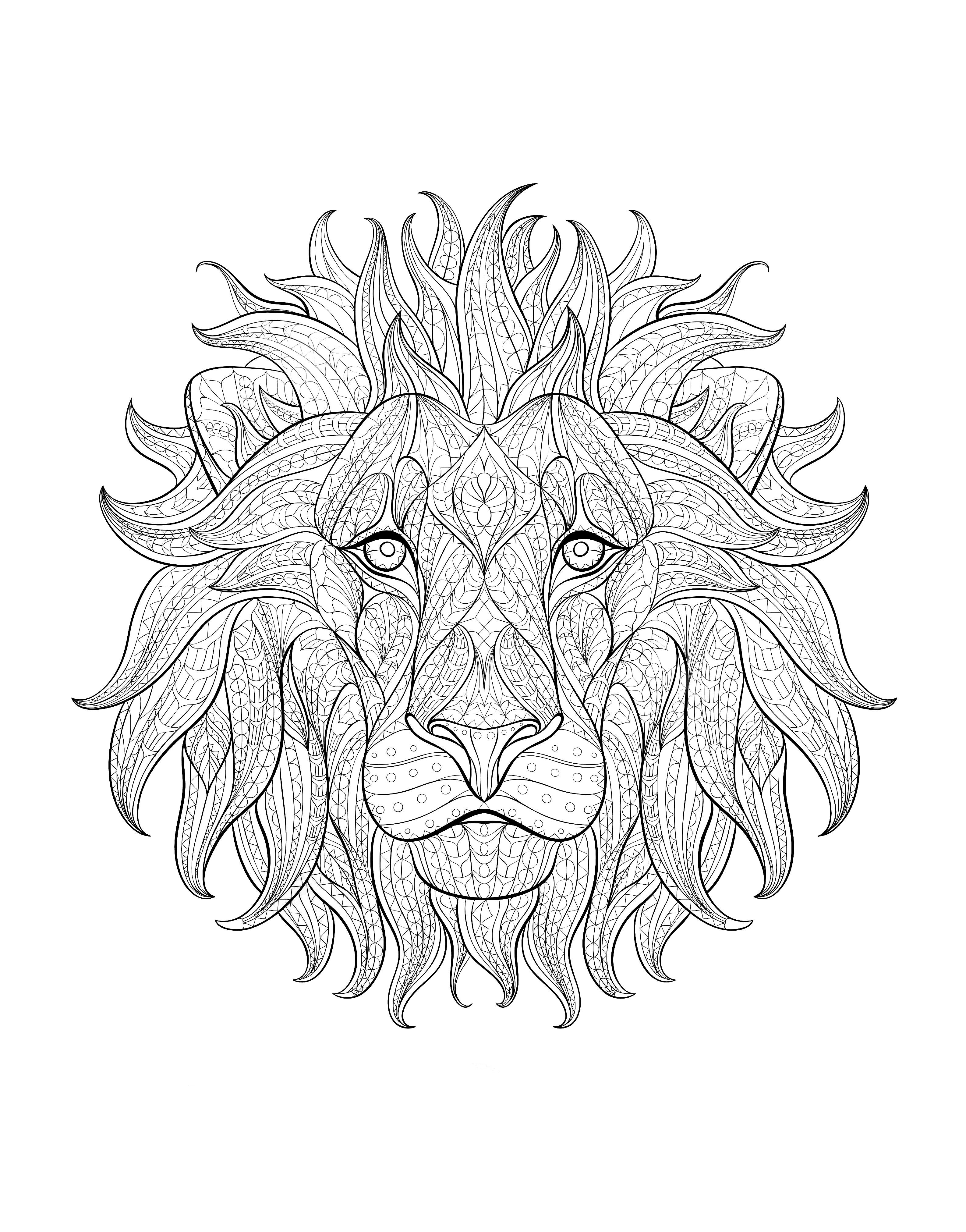 Afrique tete lion 3A partir de la galerie : Afrique