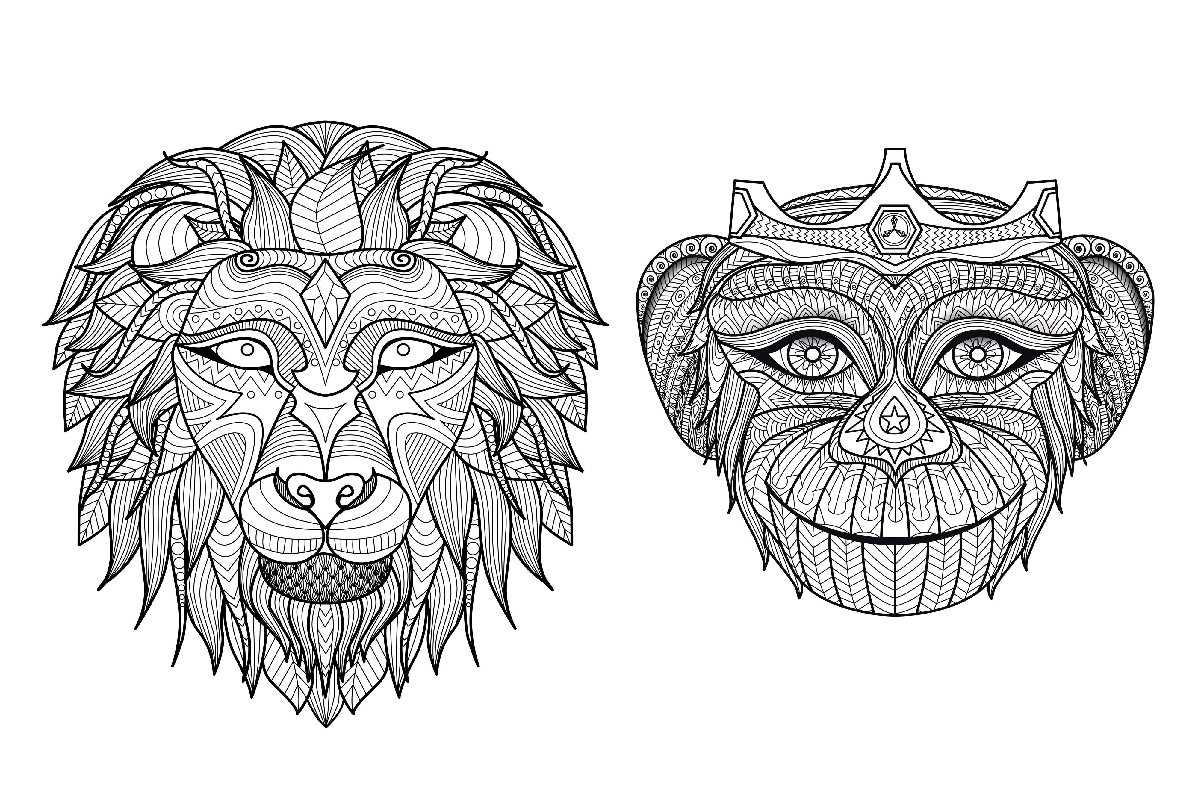 Afrique tetes singe lionA partir de la galerie : Afrique