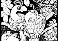 coloriage-afrique-dessin-oiseaux free to print