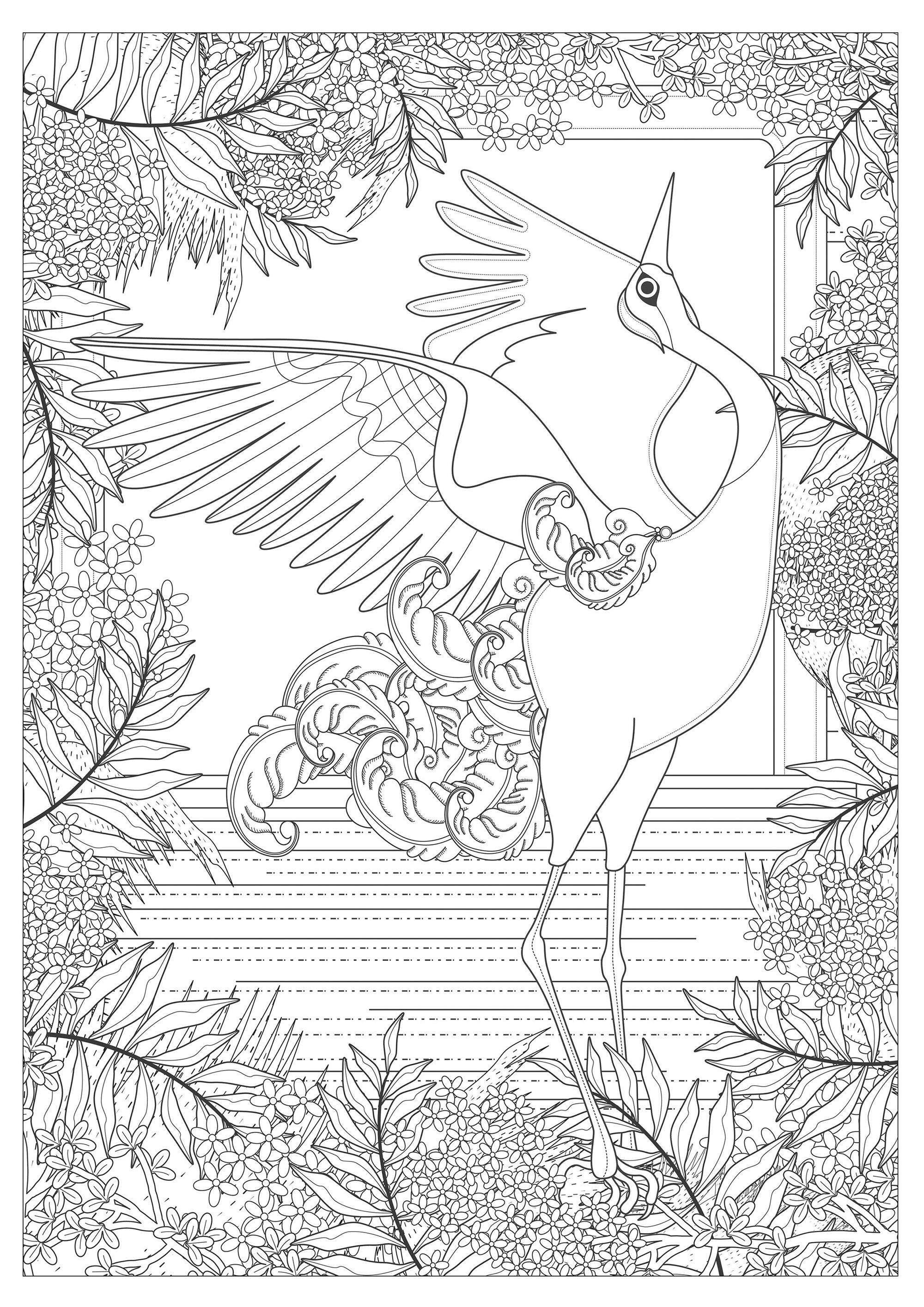 Une majestueuse grue qui ne manque que de couleursA partir de la galerie : AnimauxArtiste : Kching, Source :  123rf