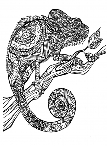 coloriage-adulte-animaux-cameleon free to print