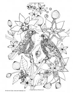 coloriage-adulte-deux-oiseaux-sur-une-branche free to print