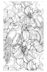 coloriage-adulte-difficile-perroquets free to print