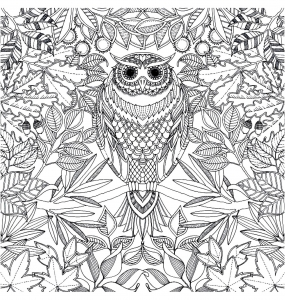 coloriage-adulte-hibou free to print