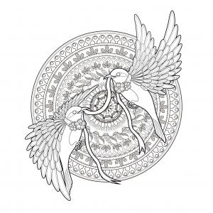coloriage-adulte-mandala-deux-hirondelles-et-un-ruban-par-kchung free to print