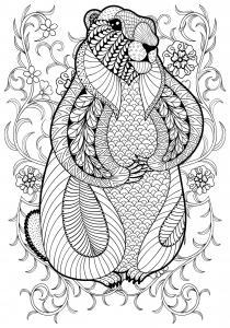 coloriage-adulte-marmotte-par-ipanki free to print