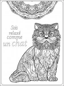 coloriage-adulte-soit-relax-comme-un-chat-par-elena-besedina free to print