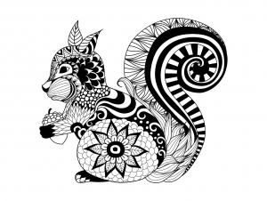 coloriage-adulte-zentangle-ecureuil-par-bimdeedee free to print