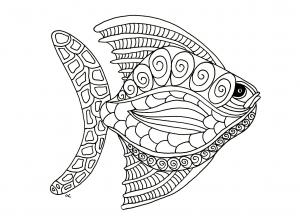 coloriage-poisson-zentangle-etape-1-par-olivier free to print
