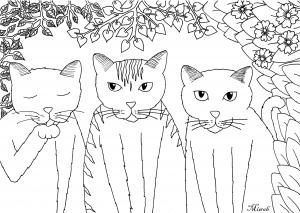 coloriage-trois-petits-chats-par-miwah free to print
