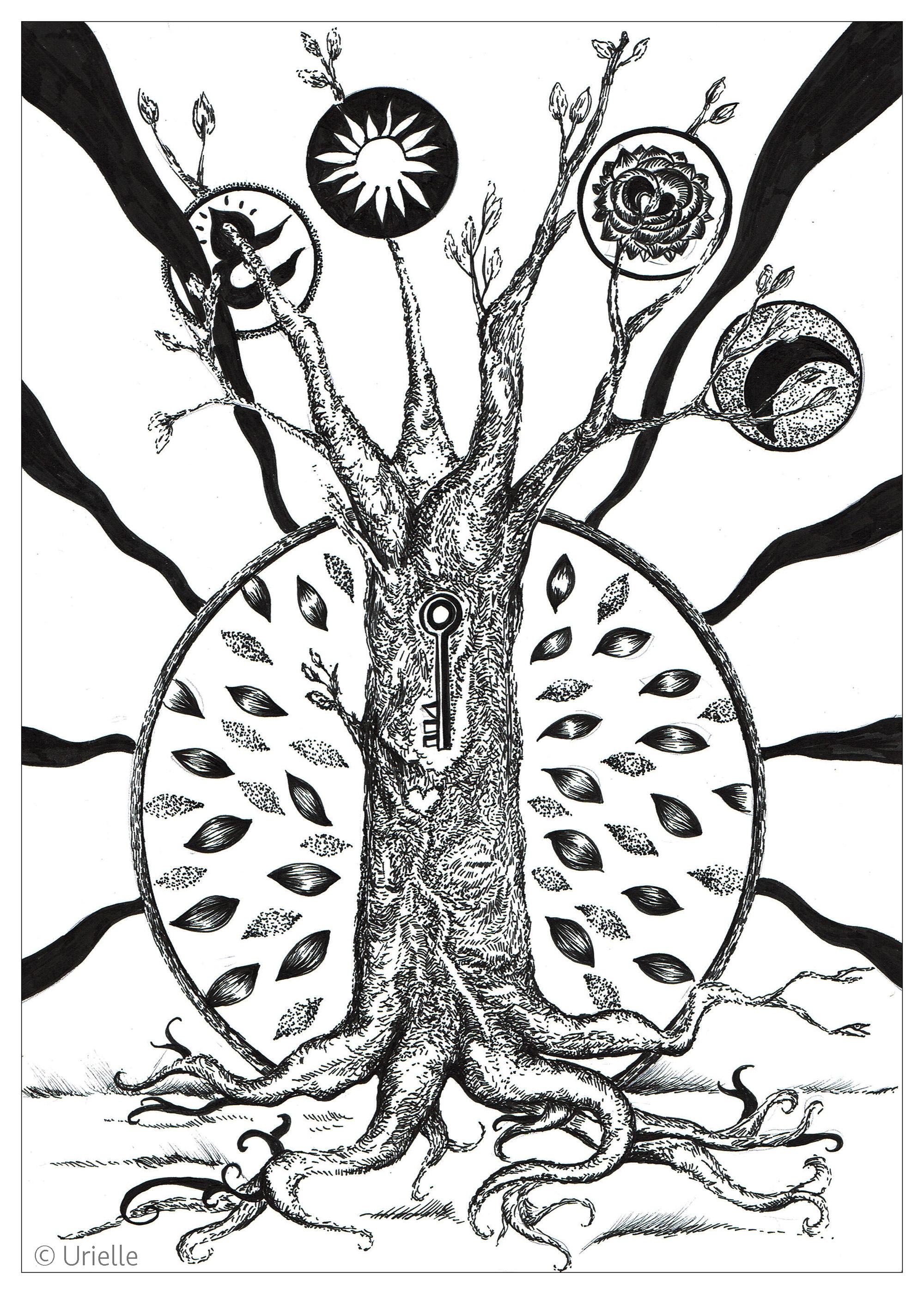 'La clé de l'arbre'A partir de la galerie : Fleurs Et VegetationArtiste : Urielle