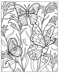 coloriage-difficile-papillons free to print