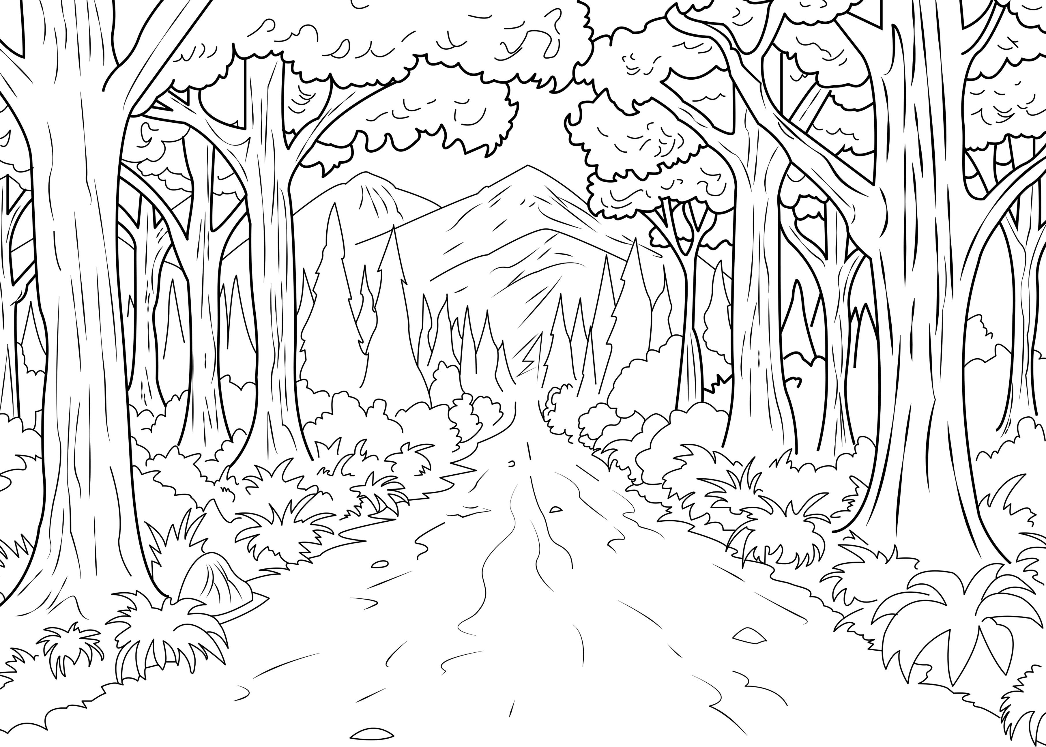 Ce coloriage représente un chemin interminable en plein coeur d'une forêt !A partir de la galerie : Jungle Et ForetArtiste : Celine