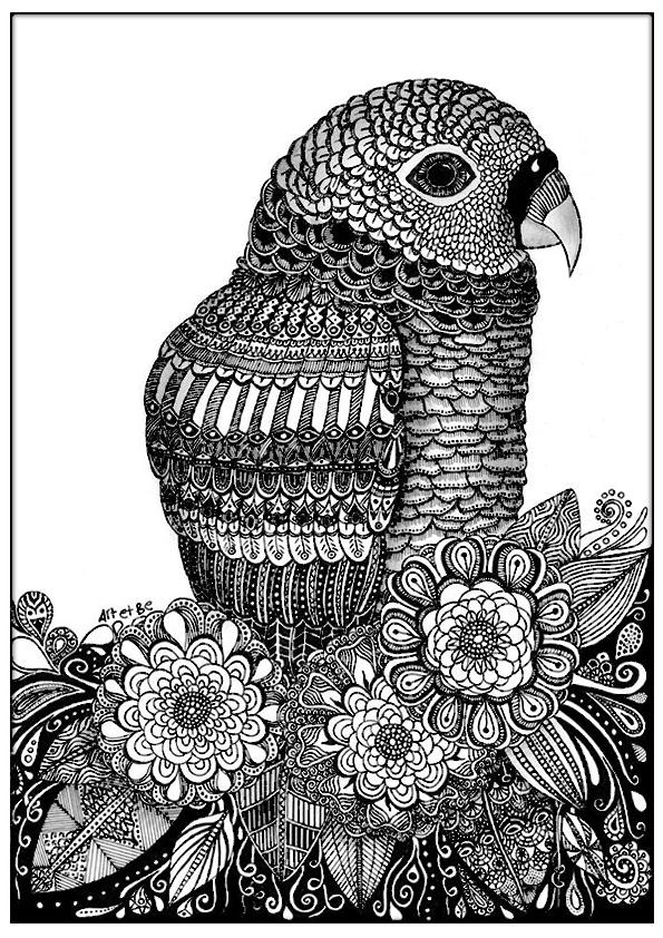 Art be coloriages difficiles pour adultes coloriage adulte zentangle oiseau sabrina - Perroquet a imprimer ...