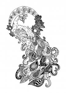 coloriage-adulte-paon-zentangle-celine free to print