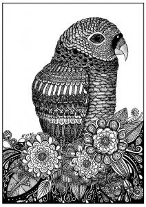 coloriage-adulte-zentangle-oiseau-sabrina free to print